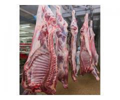 Мясо оптом куриное, говядина, баранина